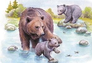 Бианки Купание медвежат, главная мысль, чему учит
