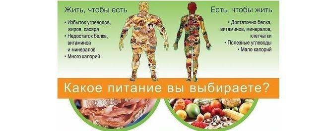 похудела на правильном питании отзывы