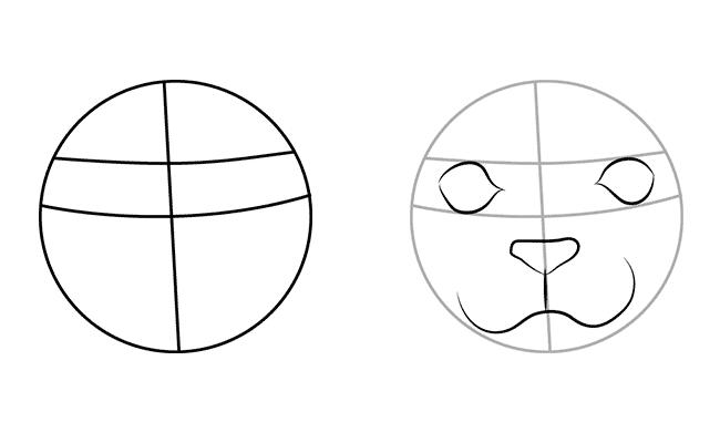 как рисовать тюленя 1