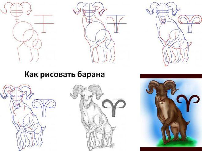 Как рисовать баранам