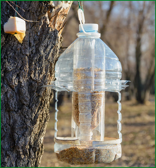 Кормушки для птиц своими руками и 5 литровой бутылки
