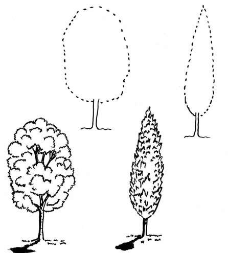 2 фото схема - это рисунок