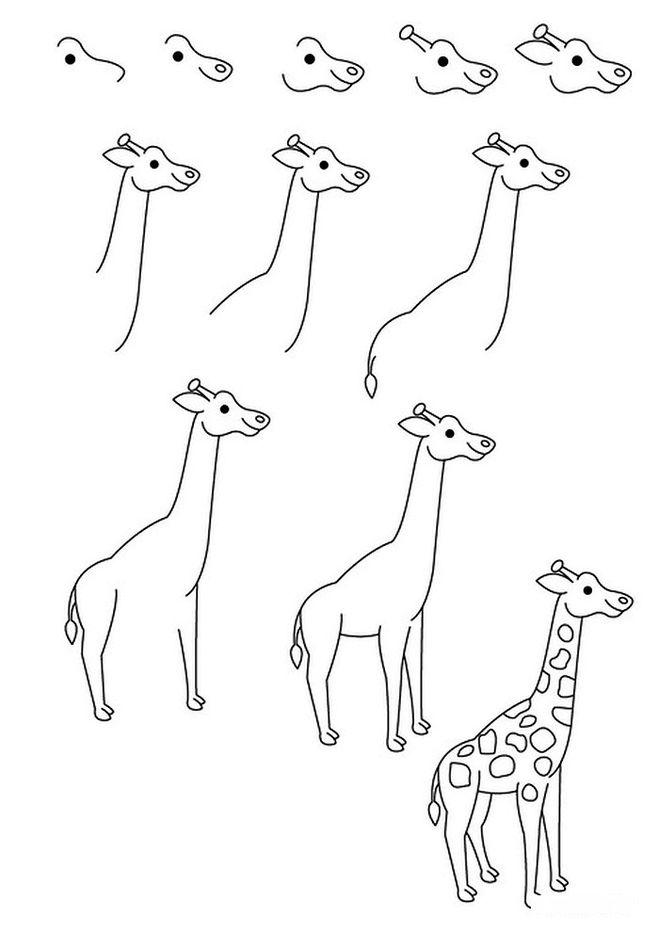 Как нарисовать для детей жирафа карандашом поэтапно