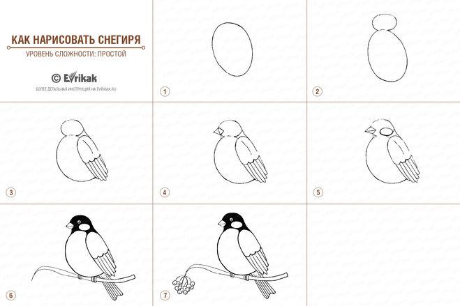 рисунки рыб простые