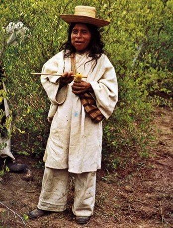 индеец Чили