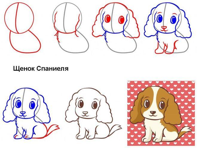 Как нарисовать собаку, Как нарисовать собаку своими руками, рисунок собака мастер-класс