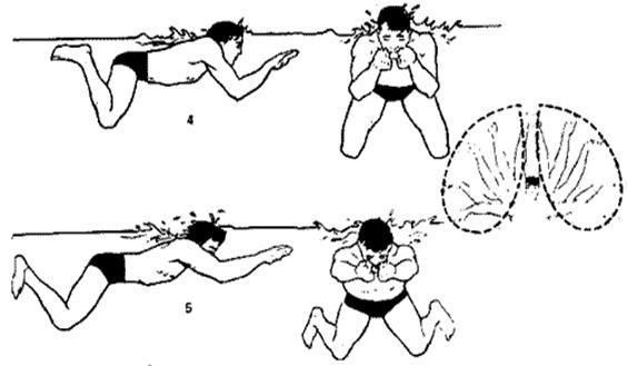 -Плавание брассом, при этом голова должна полностью погружаться под воды, вы в свою очередь тянетесь за руками.