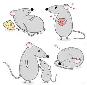 Крылатые фразы, афоризмы, выражения, где упоминают Мышь, Крысу