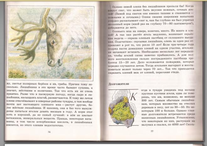 рассказ ягель зеленые страницы 2 стр