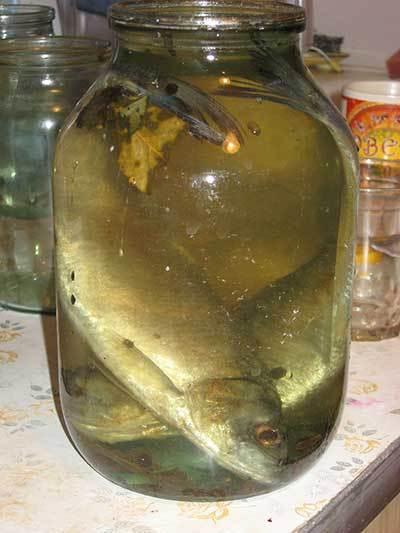 селедка маринованая