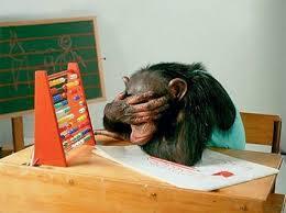 обезьяна за партой, школа для обезьян в тайланде