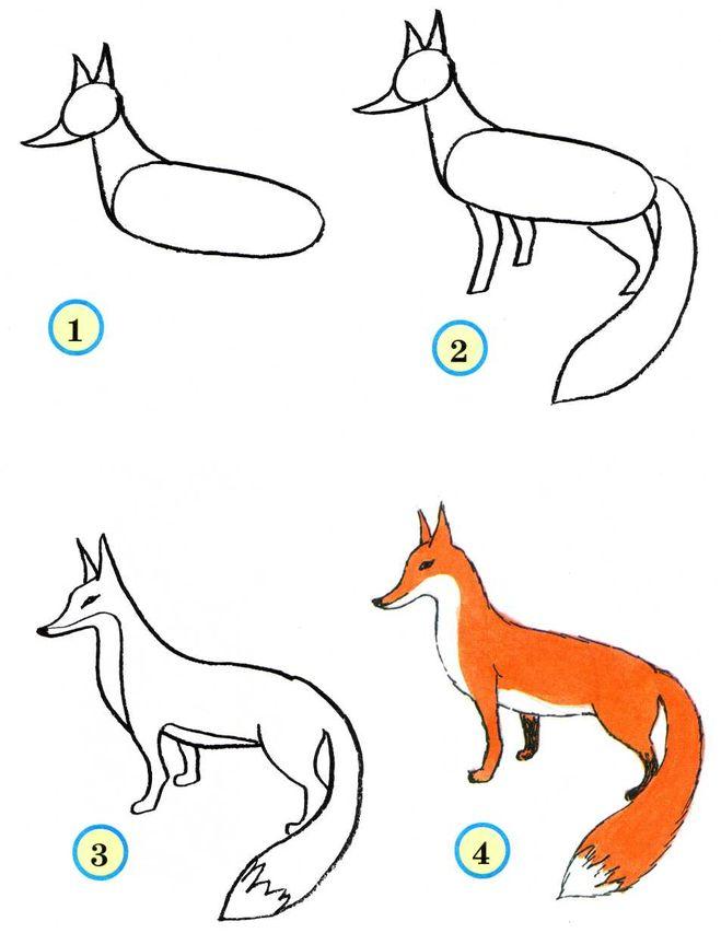 Схема как рисовать лису