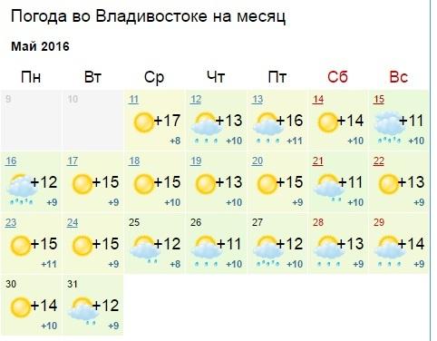 последних погода вкалининграде в августе Craft: