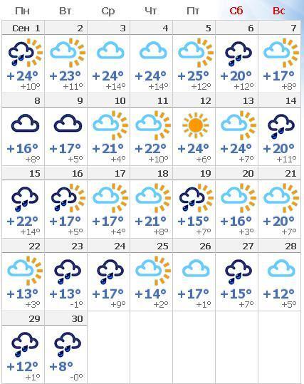 Рейх единственное погода на март бреды наверное