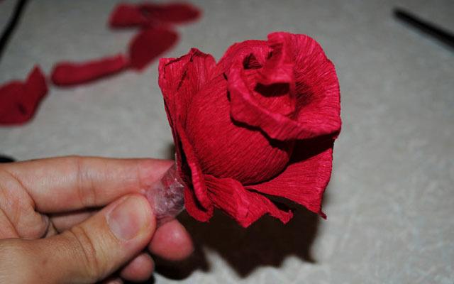 Роза гофрированной бумаги своими руками для начинающих