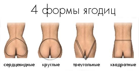 женская задница формы