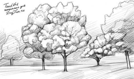 Картинки карандашом простым про осень поэтапно