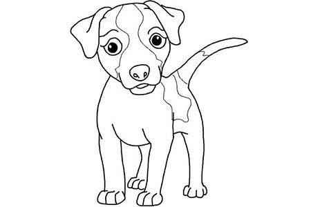 Как рисовать собаку карандашом поэтапно - где найти мастер-класс для детей?