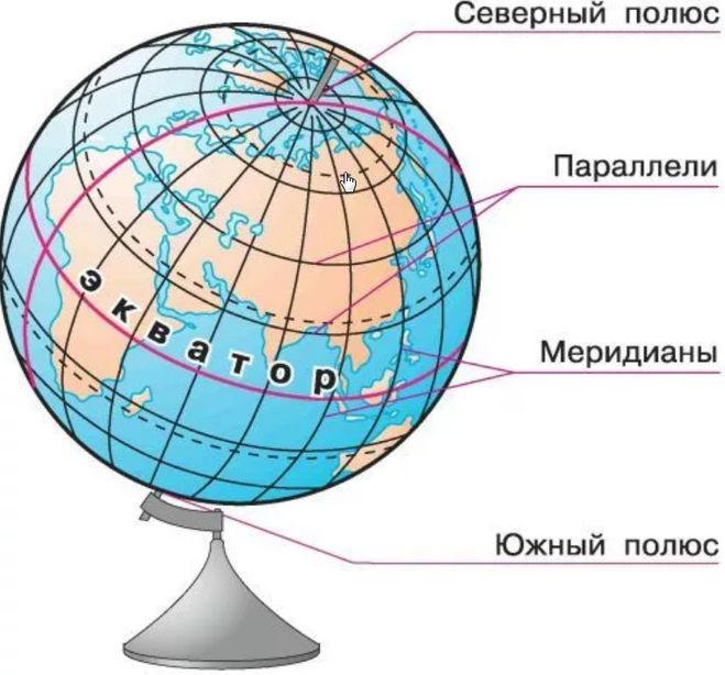Как называются вертикальные линии соединяющие полюса