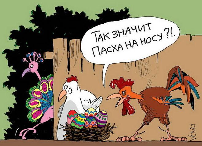 смешные картинки с петухом и курицей, карикатура петух, прикольные картинки с петухом