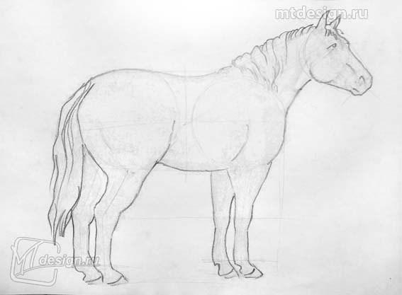 рисунки лошадей карандашом легкие