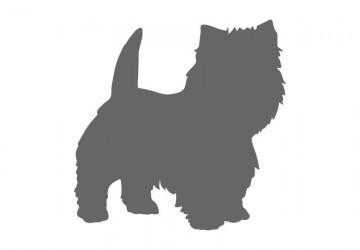 Боксер собака рисунок