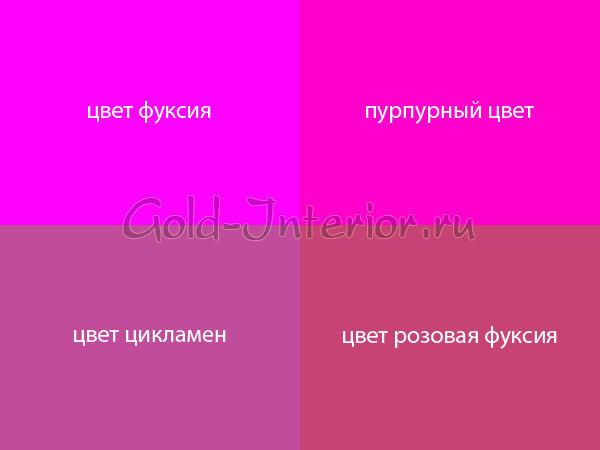 Цвет фуксия - какой он