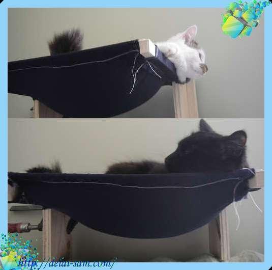 Ингалятор для кошки своими руками