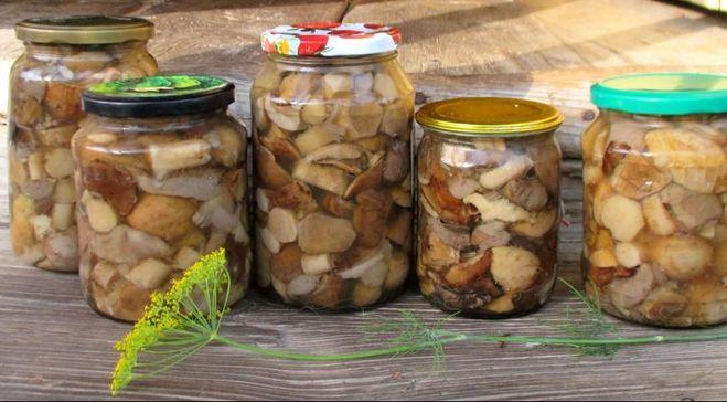 можно ли мариновать разные грибы вместе