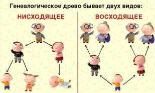 окружающий мир 3 класс - как можно строить схему родственных связей