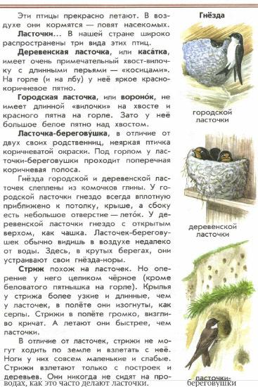 "Атлас определитель ""От земли до неба"", ласточки и стрижи"