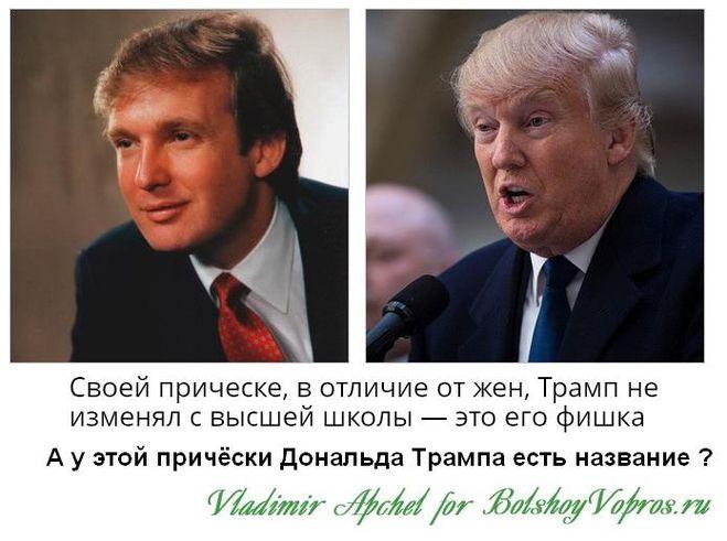 причёска Дональда Трампа название прически