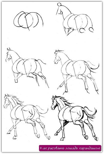 предлагаемых схем-рисунков