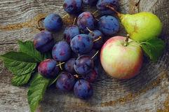 как заготовить сливы, груши, яблоки на зиму