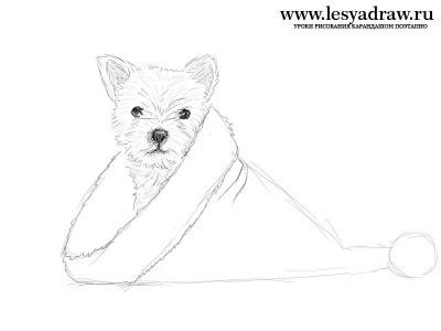 нарисовать новогоднюю собаку