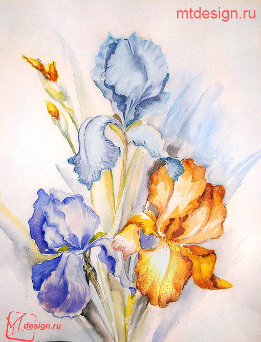 Цветы акварелью картинки поэтапно для