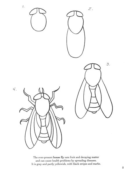 Как нарисовать карандашом поэтапно муху цокотуху
