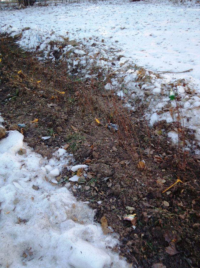 Зимние посадки