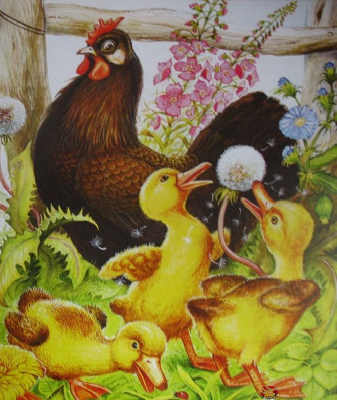 """Пришвин """"Курица на столбах"""": как написать отзыв о рассказе"""