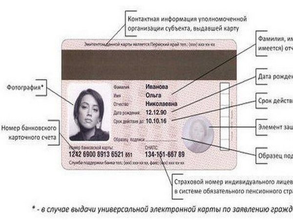 Можно ли узнать данные карты по паспорту это животное