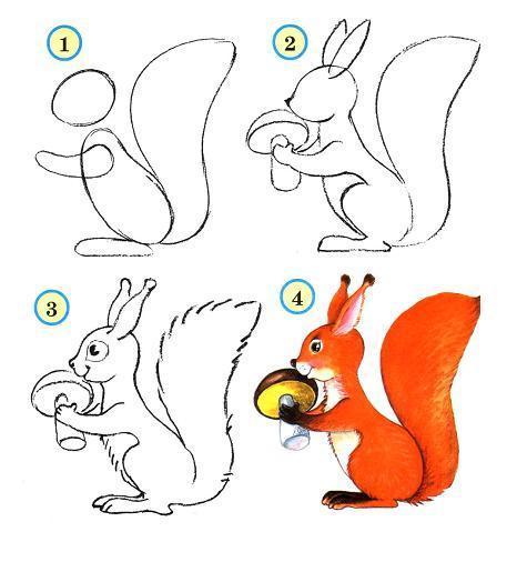 Как нарисовать ребенку белку