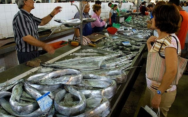 цена оптовые базы рыбы свежей в ростове на дону все