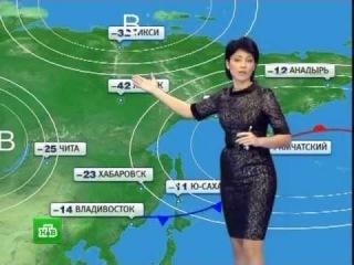Погода; Прогноз погоды; Прогноз; Лето; Лето 2017; 2017: Погода в Барнауле; Барнаул