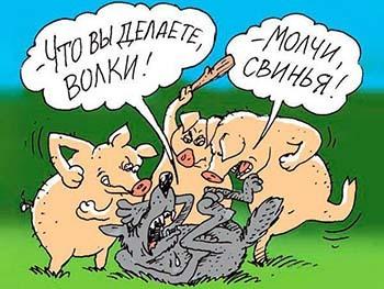 комиксы, карикатуры на Новый год со свиньей