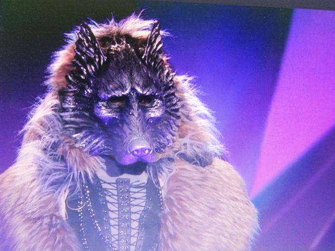 шоу маска волк