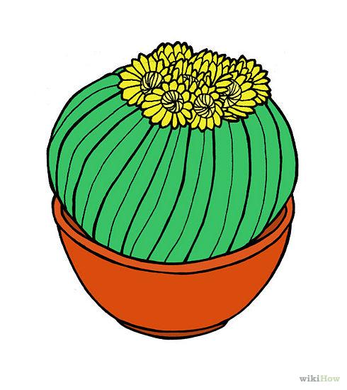 Горшок для кактуса сделать 146
