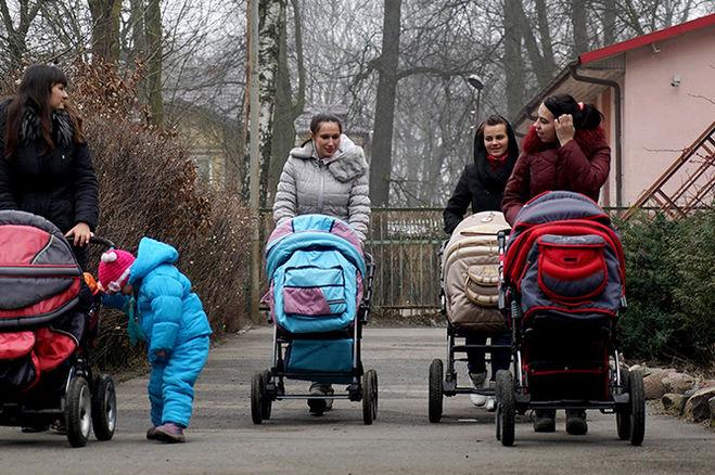 Государство начнет платить пособие за рождение первого ребенка