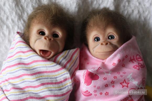 Картинки с обезьянками