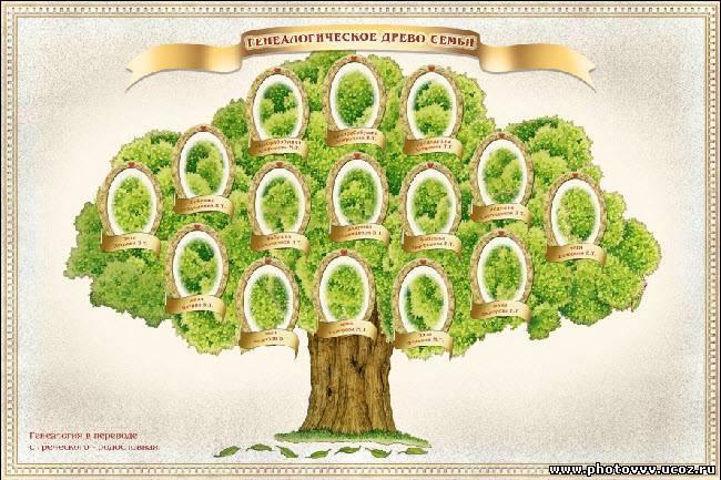 Как сделать родословное дерево семьи своими руками