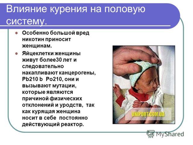 прием диетолога в оренбурге